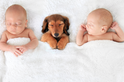 twins and puppy